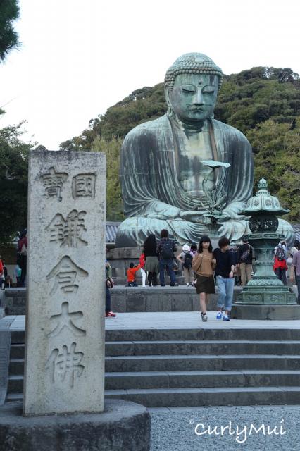大佛已被日本政府列為國寶。