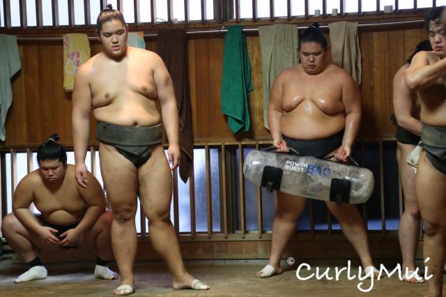 在場邊的也不等閒,辛勤地舉水樽、推木樁,鍛練力量。