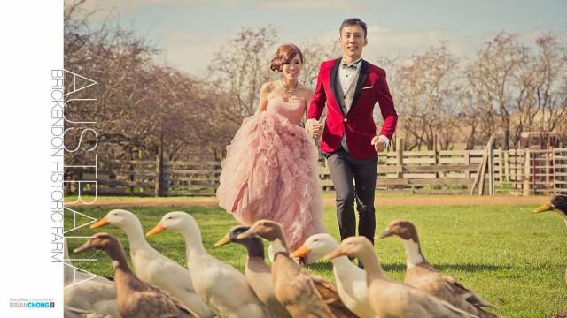 Australian Wedding Gifts For Overseas: Overseas Pre-Wedding Tour 2017