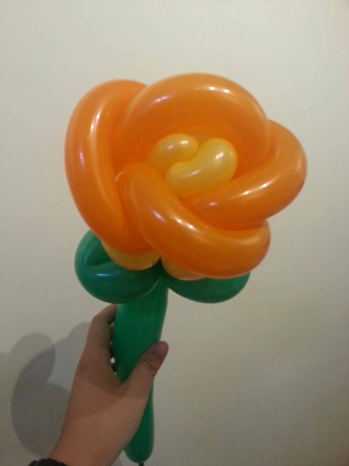 以160及260的气球,扭成玫瑰花