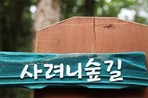 http://blog.ulifestyle.com.hk/blogger/alivemuseum/wp-content/blogs.dir/0/4107/files/2017/04/5D37C29A-514A-4836-8085-1752653C0E3F.jpg