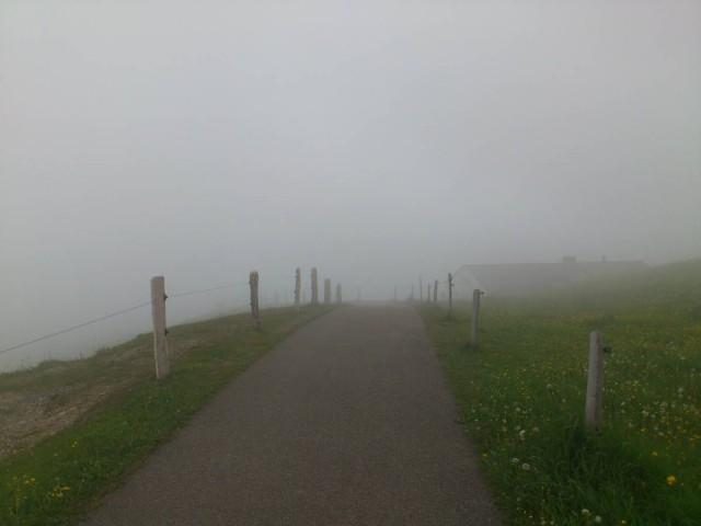 撥着大霧默默地在覓我的去路,山頂天氣不佳,真是凍到震!