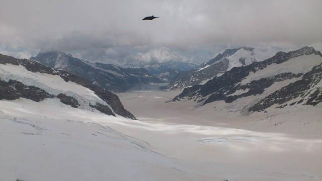 等了近一小時,阿萊奇冰河出現了!