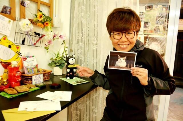 香港 大澳 吉慶街 貓咪 貓cafe cat@tai o 明信片