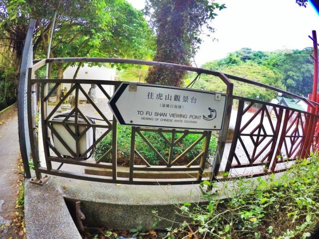 香港 大澳 吉慶街 出海 中華白海豚 新基橋 碼頭 虎山 石埗仔街