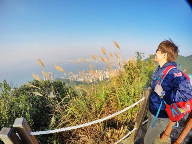香港 行山 盧吉道 山頂 觀景台 西高山 風景 天梯 太平山 維多利亞港 芒草