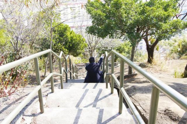 香港 短途 行山 路線 深水埗 嘉頓山