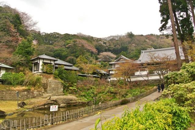 enkaguji10