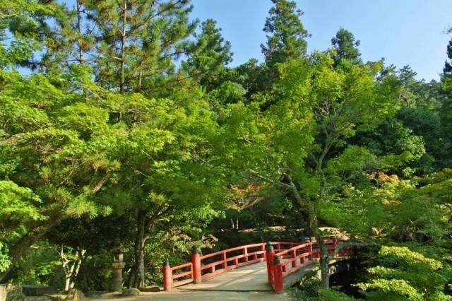 Itsukushima21