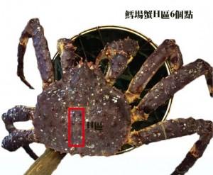 區分鱈場蟹