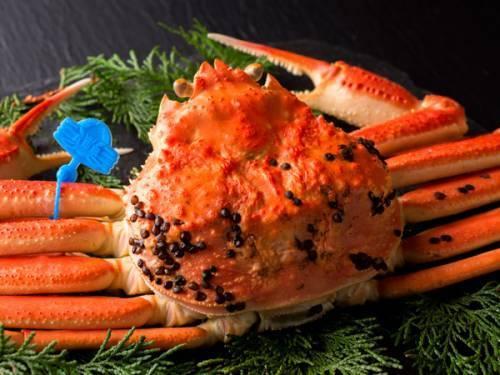松葉蟹-2