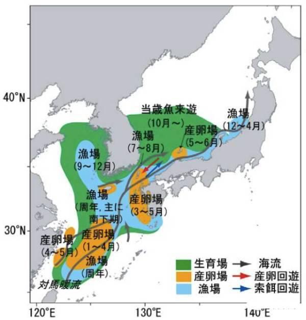 鯖魚季節遊-1
