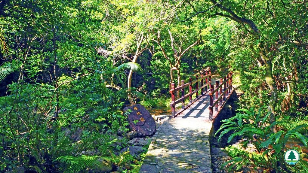 【行山路線】新界北區5條簡易行山路線推介 遠離鬧市輕鬆欣賞大自然靚景